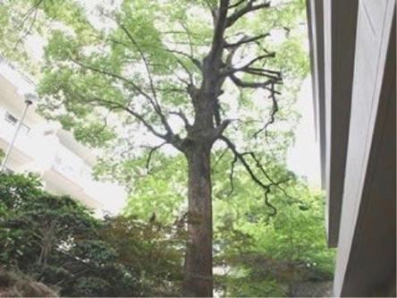 福岡市南区老人ホーム皿山有料老人ホームこのは
